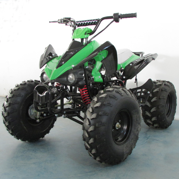 300 Atv Wiring Diagram Additionally Kazuma 50cc Atv Wiring Diagram