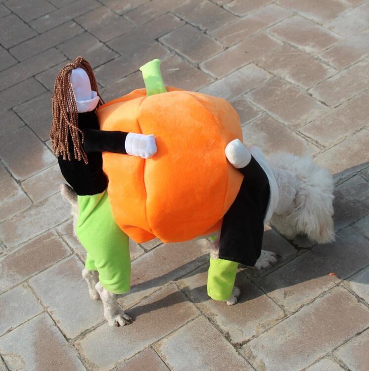Животное Карнавальный Костюм Собака костюмы на Хэллоуин Тыква Pet пальто  маленькая собака супер милые костюмы необычные ПЭТ Забавные Рождес.. de3e4d46c7073