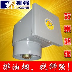 Kitchen Window Exhaust Fan Barn Doors Range Hood Silent