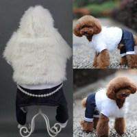 Burberry Dog Clothes Promotion-Shop for Promotional ...