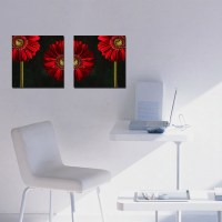 2 Piece Canvas Wall Art Prints for Home Decoration Floral ...