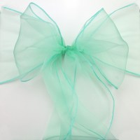 Online Get Cheap Mint Chair Sashes -Aliexpress.com ...
