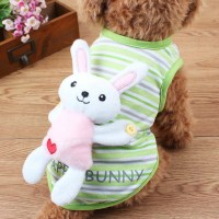 Toy Dog Clothing Promotion