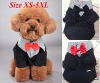 Male Dog Clothes Reviews - Online Shopping Male Dog ...
