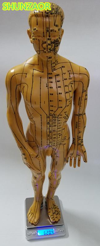 SHUNZAOR Meridian modell menschlichen akupunktur punkt menschlichen ...