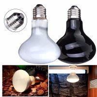 Popular Turtle Heat Lamp-Buy Cheap Turtle Heat Lamp lots ...