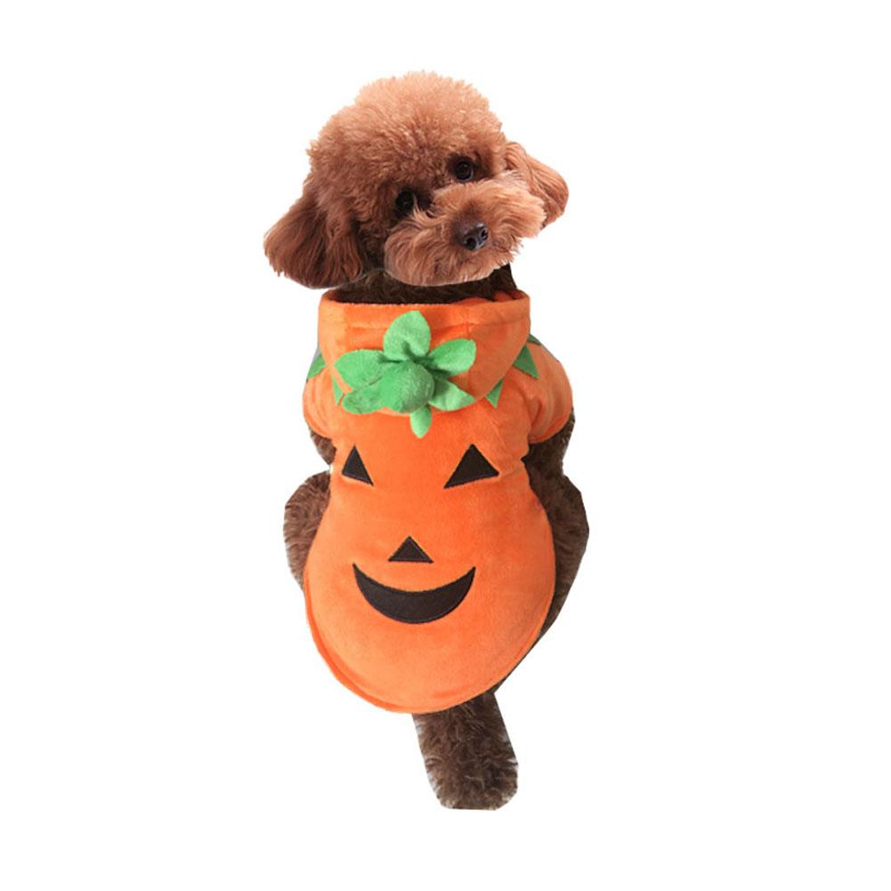 ᐅMascotas traje de Halloween calabaza perro abrigo de invierno ropa ...