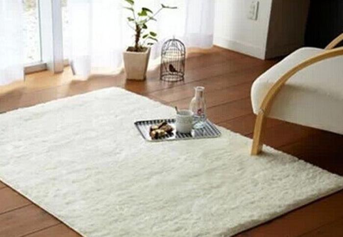 White Fluffy Living Room Rug  Zion Star