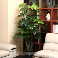 Official recommendation artificial plants artificial ...
