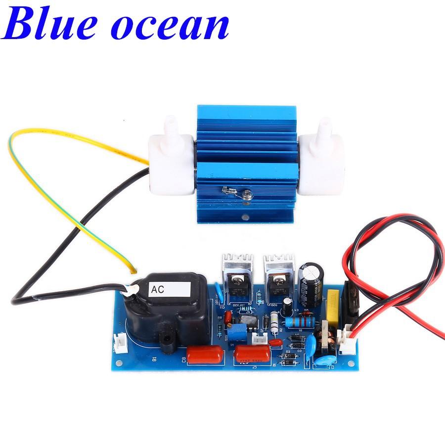 2X Générateur D/'Ozone Ozone désinfection machine Purificateur d/'air outil Purificateur d/'air 20g//h