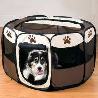 2016 HOT SALE Pet Bergan Comfort Carrier and Best Choice ...