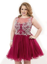 Plus Size Short Red Prom Dresses - Holiday Dresses