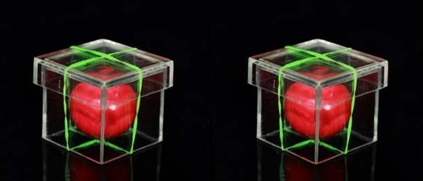 Solid ball penetrates transparent cube trick