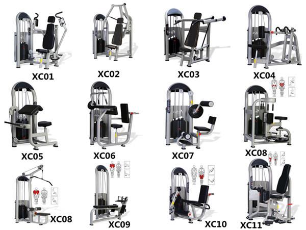 Gym: Gym Equipment Names