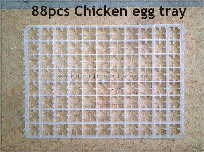 Chicken Egg Cartons Paper