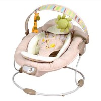 Free shipping Bright Starts Baby Vibrating Chair Comfort ...