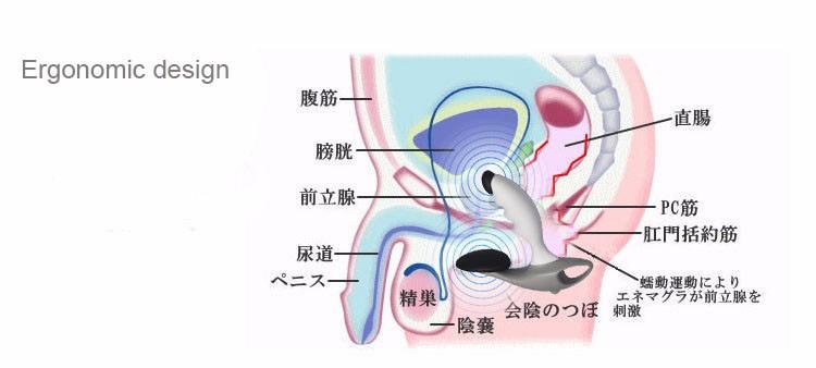 ⊱2017 Nuovo Rhinio RBX-3 RMX-4 Tipo di Impulso Terapia Magnetica ... 8301821cc5eb