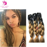 Micro Braids Two Tone Hair Color Pictures to Pin on ...