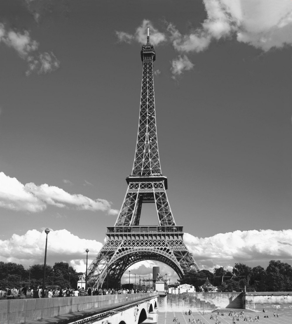 LifeArt Christmas Gift Eiffel Tower bathroom shower
