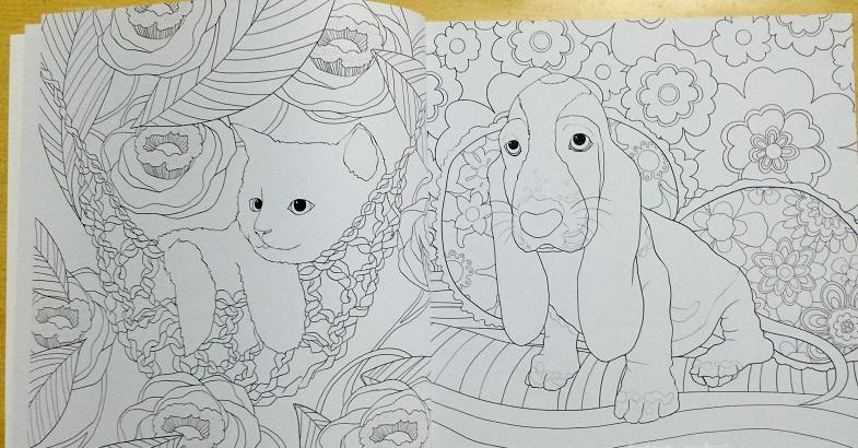 №Mi Meng Chong colorear Libros para los niños adultos aliviar el ...
