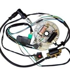 description all electrics 50 70 110 125cc 140 wire harness cdi coil  [ 1000 x 1000 Pixel ]