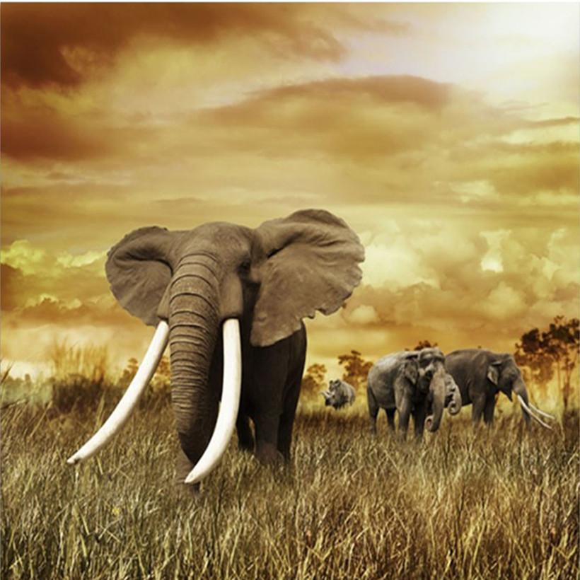 ᑎ‰Elefante 70x70 cm costura 3D DIY Cuadros de punto de cruz Costura ...