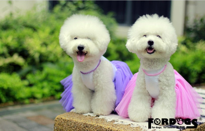 ⊹White Dog Wedding Dress with Necklace Puppy Pets Party Gowns Tutus ...