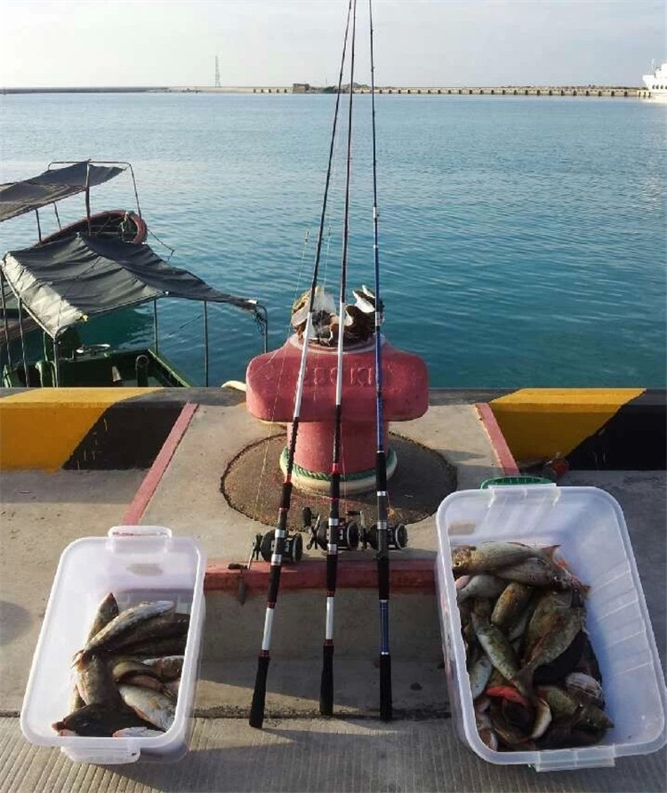 Okuma MAGDA Ma-30dx carrete de la pesca Carrete de pesca En Barco ...