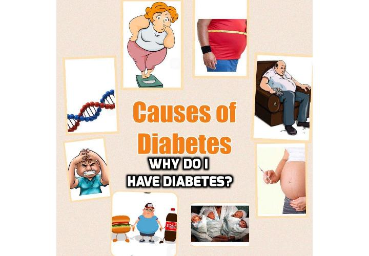 Why Do I Have Diabetes, What Are the Main Diabetes Causes? Diabetes causes range from your genetic make-up, family health history, ethnicity, fitness and environmental factors. There is no single diabetes causes that fits every type of diabetes. This is because the diabetes causes can vary depending on the individual and the type of diabetes. For example; the causes of type 1 diabetes vary considerably from the causes of gestational diabetes. Similarly, the causes of type 2 diabetes are distinct from the causes of type 1 diabetes.