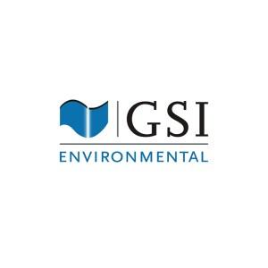 GSI Environmental Logo