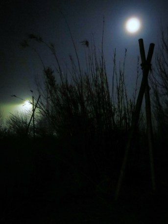 foggy pond...deep night, just me & my G15