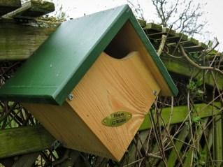 IMG_0306-nest-box-Lr4 (Large)