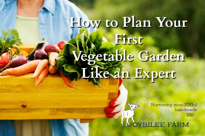 How To Plan A Garden Like An Expert Even If It S Your First