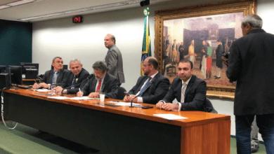 Foto de Deputados Federais aprovam projeto que beneficia o MA