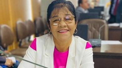 Foto de Aulão preparatório para o ENEM terá apoio de Fátima Araújo neste sábado (26)