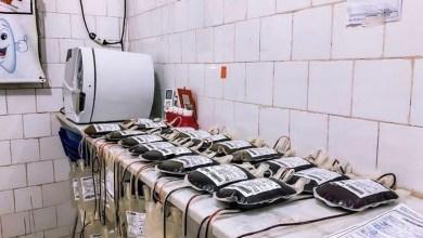 Foto de BEQUIMÃO-MA: Campanha de Doação de Sangue coleta 31 bolsas