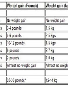 Weight gain for the total pregnancy ideal during also november mid wifefe rh  rk wordpress
