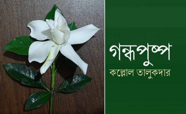 গন্ধপুষ্প || কল্লোল তালুকদার