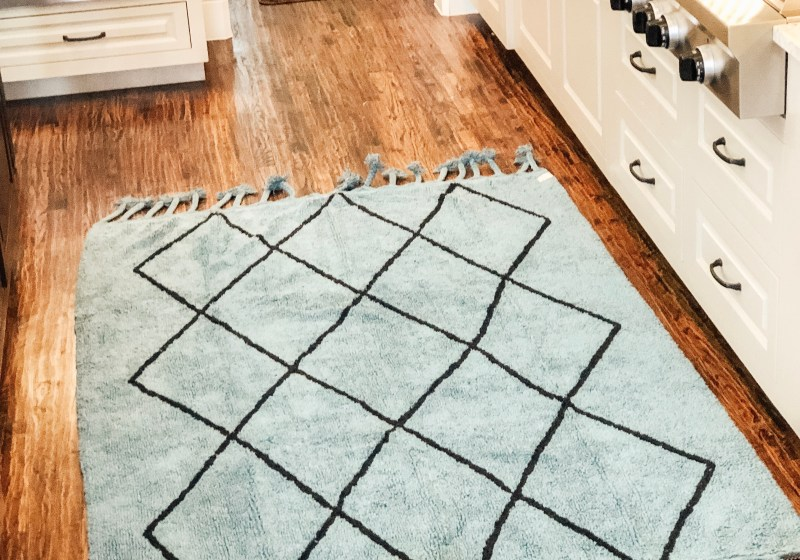 Area accent rug Lorena canals