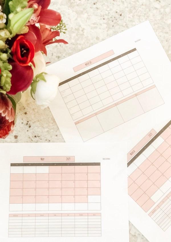Influencer Calendar/ Planner