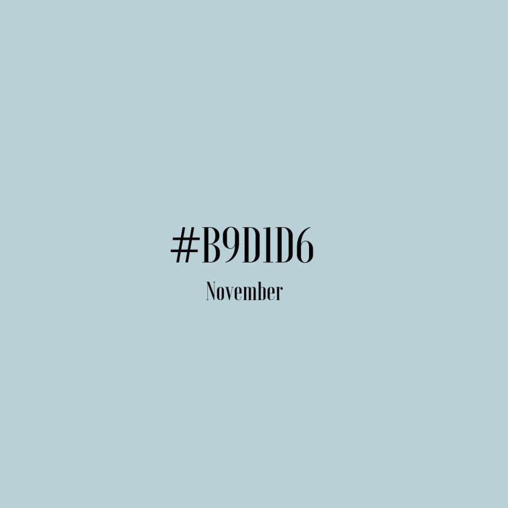 color #b9d1d6