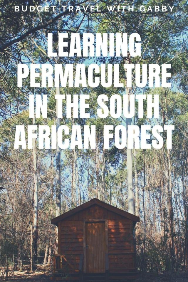 LEARNING PERMACULTURE SOUTH AFRICA VOLUNTEERING