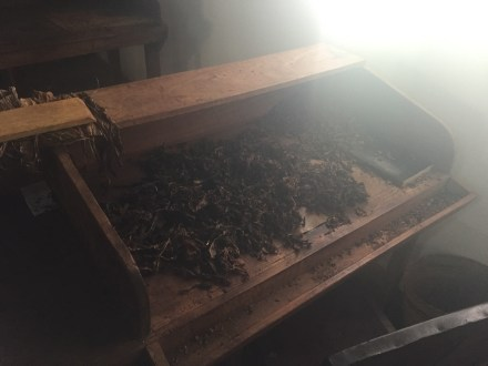 ground tobacco