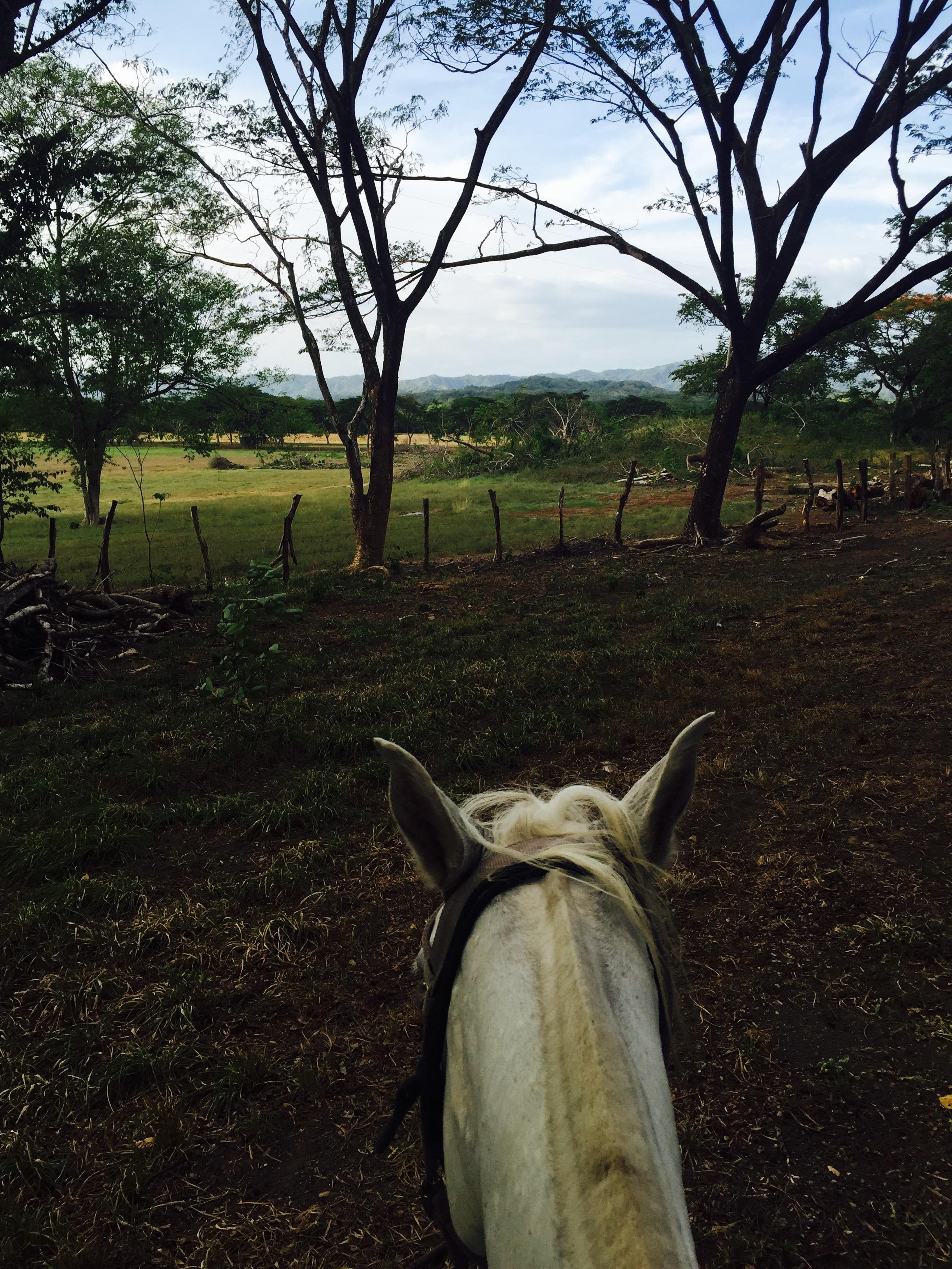 Lento Pero Sela Fotografia Y La Naturaleza