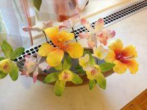 Orchideen32