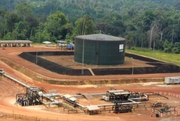 Les champs Ezanga de Maurel & Prom produiront -30% de pétrole en mars 2016