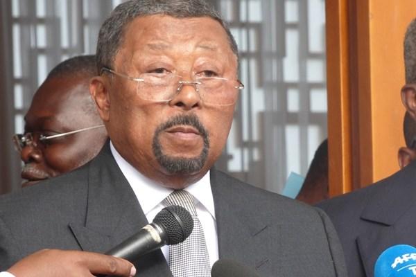 Jean Ping reçoit les diplomates accrédités au Gabon