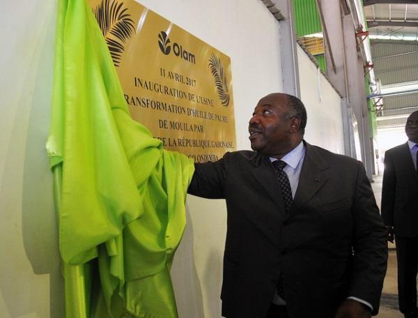 Ali Bongo ironise sur les critiques contre le palmier à huile