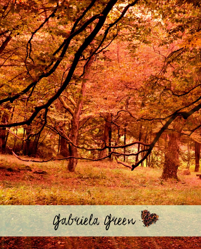 Autumn forest imagery – guided meditation | Gabriela Green