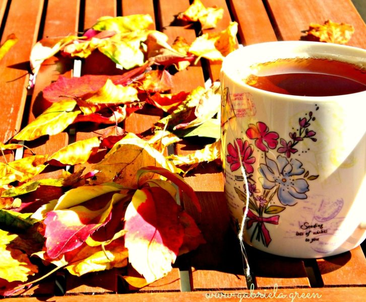 Tea Talk: Autumn leaves and positive thoughts